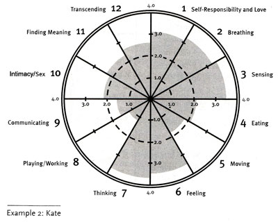 Wellness Wheel Example 2: Kate