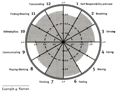 Wellness Wheel Example 4: Ramon