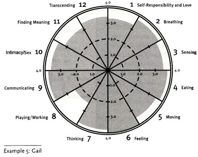 Wellness Wheel Example 5: Gail